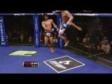 красивый удар ногой в UFC
